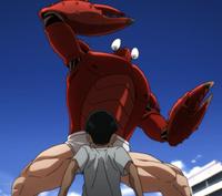 CrabAttackKid