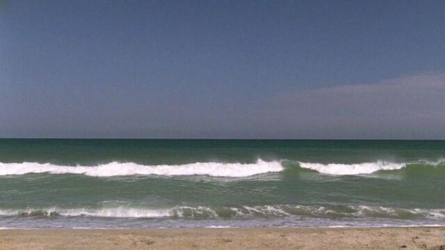 File:701 tree hill beach.jpg