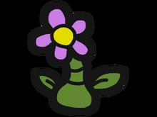 Maul Flower Benign