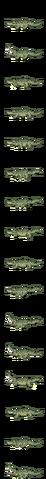 File:Albino Crocodile.png