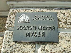 ZIN St Petersburg plate