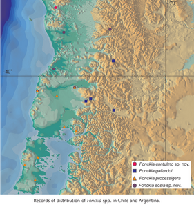 Fonckia map