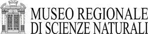 Torino Logo-MRSN-Stampa