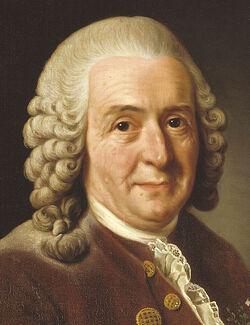 847px-Carl von Linné