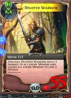 Devoted Warrior