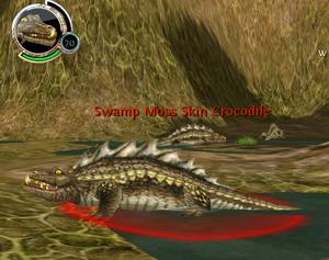 Swamp Moss Skin Crocodile