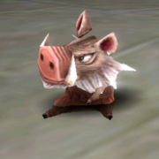 Pet-anim-boar-piglet02
