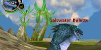 Saltwater Bulette