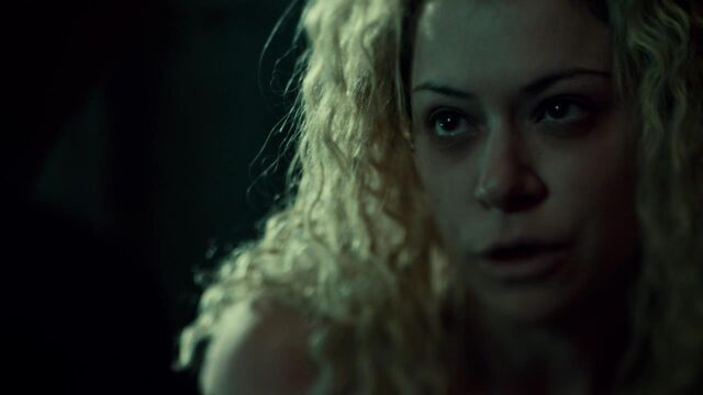 File:OrphanBlackS01E07-0560.jpg