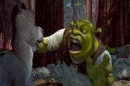 Shrek 006