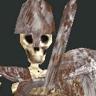 File:Armed Skeleton.png