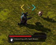 SpiritBloom