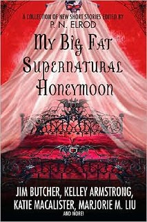 MyBigFatSupernaturalHoneymoon cover