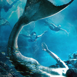MermaidCanonsTaken