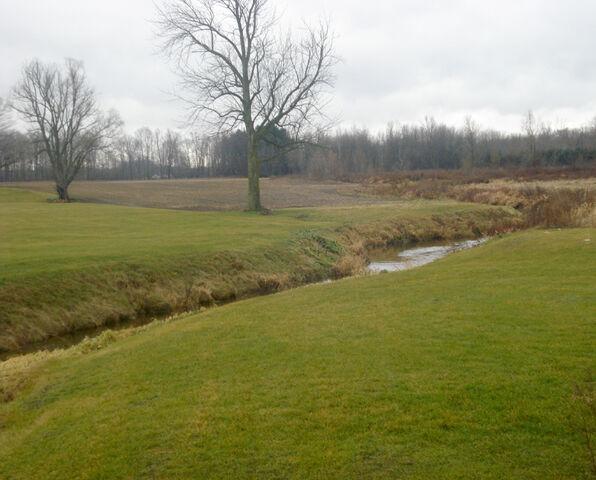 File:Branch creek.jpg