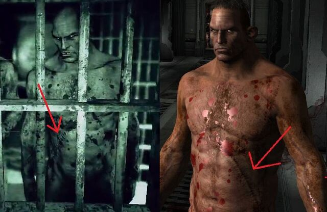 File:The Brothers' scars.jpg