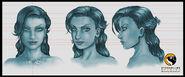 Velvet Face Sheet