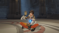 Tracer sitting