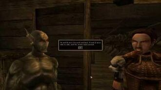 I replaced every sound in morrowind with the tim allen grunt