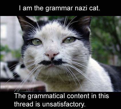 File:LOLcat - Grammar Nazi Cat.jpg