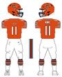 Bears alternate uniform