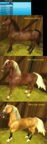 File:My other new horses xD.jpeg