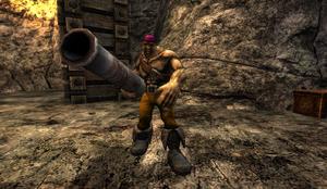 Yellow Bossman in Stone Pit