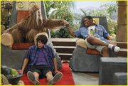 Mitchel-musso-wild-things-kelsey-chow-teen-vogue-16