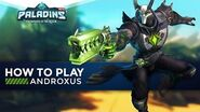 Paladins - How To Play - Androxus (The Ultimate Guide!)