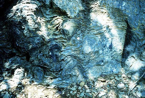 File:Stromatolites.jpg
