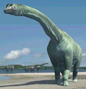 Turiasaurus