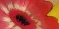 Pandora Hearts 2011 Calendar