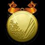 Gold medal large