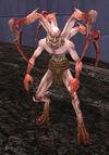 Arachnoid 01