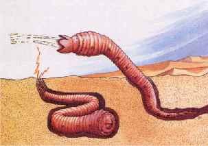 File:Mongolian-death-worm.jpg