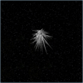 Frost crystal.png