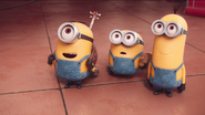 Minions are meeting herb