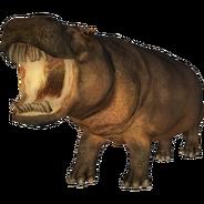 Hexaprotodon sivalensis (Lazardi) 1
