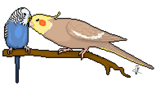 File:Wikia-Visualization-Add-4,parrots.png
