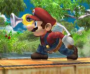 Mario 070906b