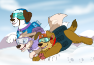 Here come the snowpups