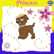 Princess copy