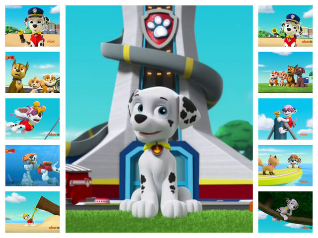 File:Pups leave marshall home alone paw patrol collage by bagel beagle-d9a2rjc.jpg