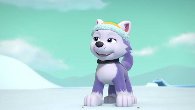 File:PAW.Patrol.S02E07.The.New.Pup.720p.WEBRip.x264.AAC 1219885.jpg