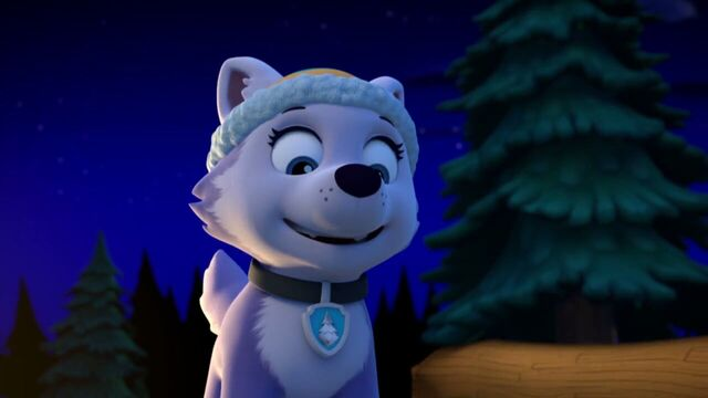 File:PAW.Patrol.S02E07.The.New.Pup.720p.WEBRip.x264.AAC 1317483.jpg