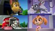 PAW.Patrol.S01E15.Pups.Make.a.Splash.-.Pups.Fall.Festival.720p.WEBRip.x264.AAC 193527