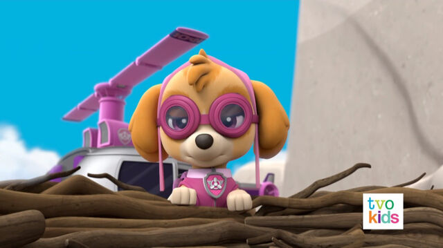 File:PAW Patrol Pups Save a Flying Kitty 34.jpg