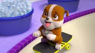 PAW.Patrol.S01E15.Pups.Make.a.Splash.-.Pups.Fall.Festival.720p.WEBRip.x264.AAC 95963