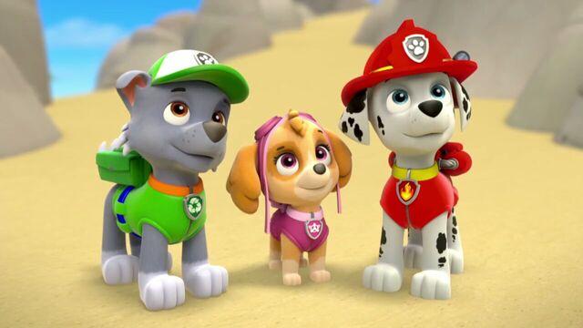 File:PAW.Patrol.S01E26.Pups.and.the.Pirate.Treasure.720p.WEBRip.x264.AAC 630063.jpg