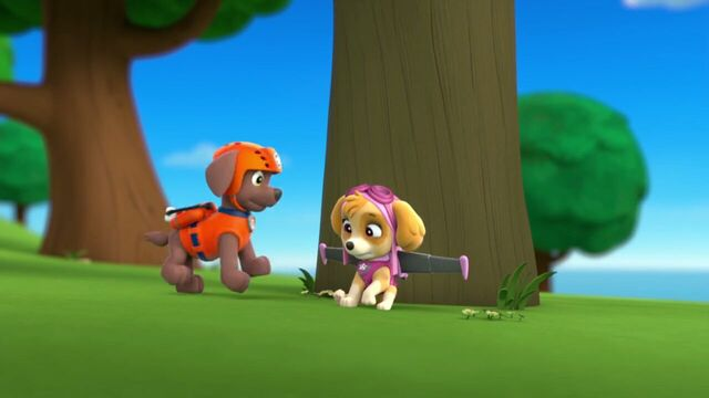 File:PAW.Patrol.S01E26.Pups.and.the.Pirate.Treasure.720p.WEBRip.x264.AAC 905037.jpg